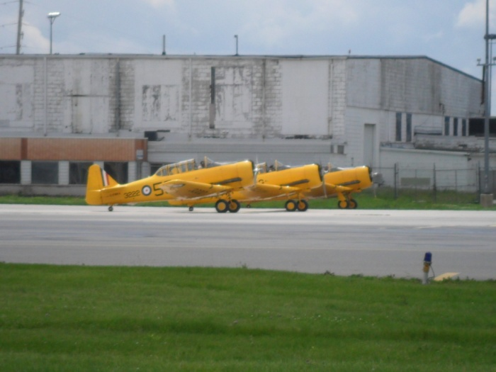 Harvards Ground Hamilton
