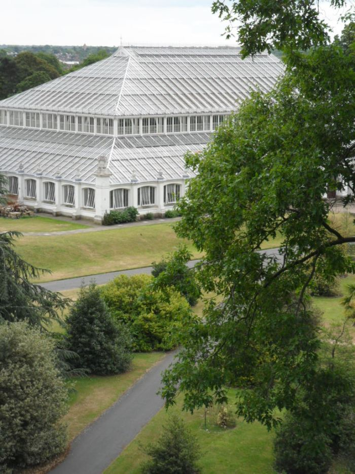 Kew Greenhouse View
