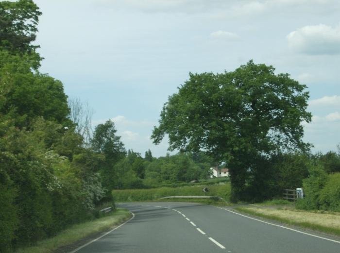 Hinckley Countryside
