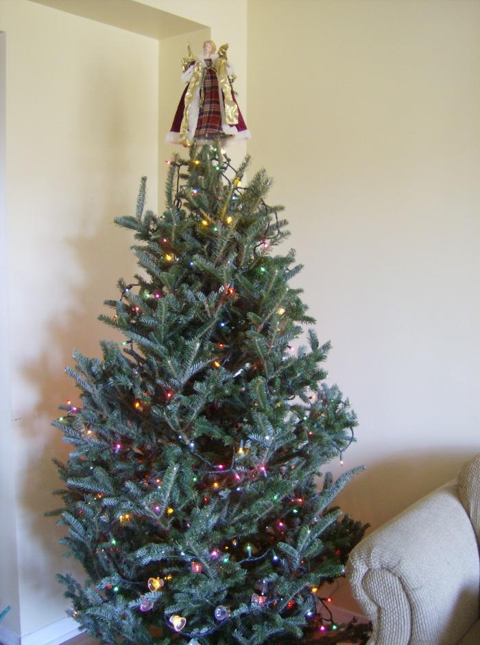 Christmas Tree Before