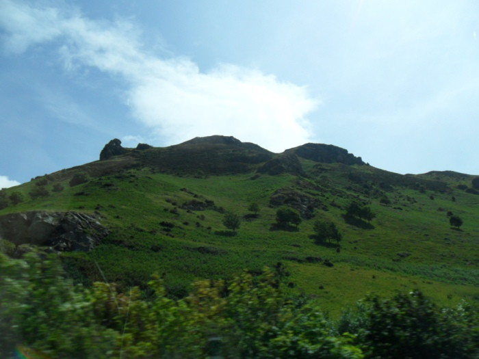 Welsh Mountain