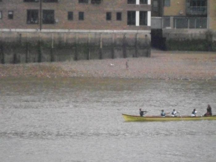Docklands Boat